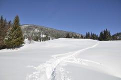 Senda para peatones en nieve grande Imagen de archivo