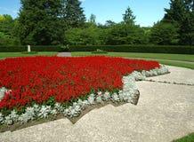 Senda para peatones en un parque hermoso. Paisaje. Fotografía de archivo