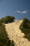 Senda para peatones sobre la duna fotografía de archivo