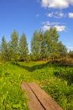 Senda para peatones y pequeño puente de madera Foto de archivo