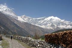 Senderismo de Himalaya Nepal Imagen de archivo libre de regalías