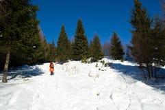 Senderismo de la montaña del invierno Imagenes de archivo