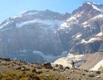 Senderismo del hombre en montaña de la altura Fotos de archivo