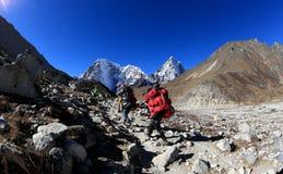 Senderismo nepalés del equipaje que lleva en la manera al campo bajo del everst Imagen de archivo libre de regalías