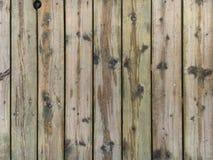 Sendero de madera Imágenes de archivo libres de regalías