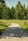 sendero de madera en el pantano - vertical, imagen lista del dispositivo móvil Fotos de archivo libres de regalías