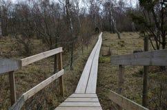 Sendero de madera en un paisaje nórdico Imagen de archivo libre de regalías
