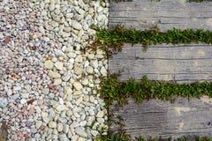 Sendero de piedra del ornamento con el guijarro y la hierba Foto de archivo libre de regalías
