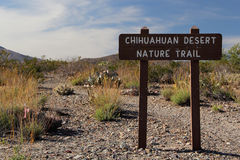 Sendero del desierto de Chihuahuan fotografía de archivo
