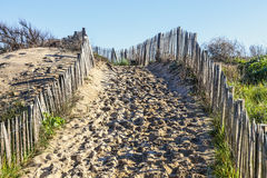 Sendero en la duna atlántica en Bretaña Imágenes de archivo libres de regalías