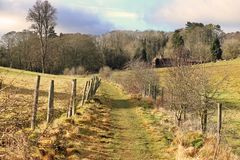 Sendero en las colinas de Chiltern, Reino Unido Imagenes de archivo