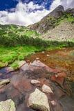 Sendero en las montañas de Tatras por la corriente, Polonia Fotos de archivo