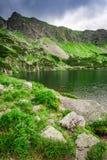 Sendero en las montañas en verano, Polonia de Tatras Imágenes de archivo libres de regalías