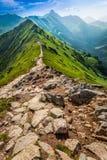 Sendero en las montañas, Polonia Fotografía de archivo