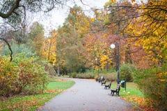 Sendero o rastro con el banco para la relajación en parque otoñal Fotografía de archivo libre de regalías