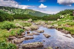 Sendero por la corriente en las montañas de Tatras, Polonia Fotografía de archivo