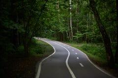 Sendero vacío con una trayectoria de la bici en el bosque verde Fotos de archivo libres de regalías