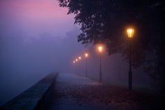 Sendero vacío en niebla de la mañana con el cielo coloreado visible Fotos de archivo