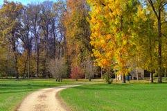 Sendero y árboles con follaje otoñal en Italia Fotos de archivo libres de regalías