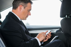 Sending an urgent message. Side view of confident mature businessman typing message on his smart phone while sitting on the back seat of a car Stock Photos