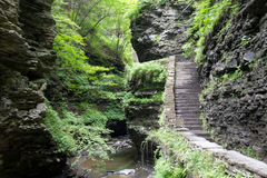 Seneca Falls Stairway Fotografía de archivo