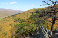 Seneca rock in Fall - appalachian mountains - West Virginia, USA Royalty Free Stock Images