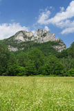 Seneca Rocks Stockbilder
