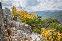 Seneca Rocks in Virginia Occidentale Immagine Stock