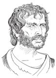 Seneca portrait in line art illustration