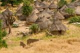 Senegal Andyel Hut. Africa Architecture Stock Photo