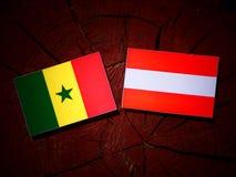 Senegal flag with Austrian flag on a tree stump  Stock Image