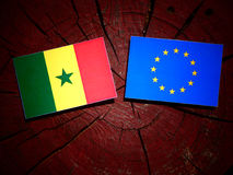 Senegal flag with EU flag on a tree stump isolated. Senegal flag with EU flag on a tree stump Royalty Free Stock Photo