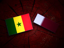 Senegal flag with Qatari flag on a tree stump isolated. Senegal flag with Qatari flag on a tree stump Stock Image