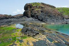 Senegal, ilha de la Madeleine Imagem de Stock