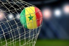 Senegal soccerball in net. Image of Senegal soccerball in net Stock Image