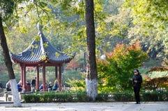 Senery di autunno Fotografia Stock Libera da Diritti