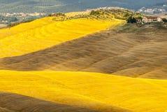 Senesi de Creta, paisaje característico en el d'Orcia de Val Foto de archivo