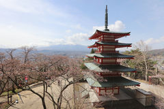Sengen Shrine area is viewpoint of Mount Fuji i. Mt Fuji viewed from behind Chureito Pagoda at 2016 Royalty Free Stock Photo