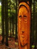 Senhor da floresta imagem de stock royalty free