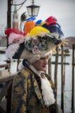 Senhor de Veneza Fotos de Stock Royalty Free