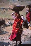 Senhora aciganada, Jaisalmer, Índia Imagem de Stock Royalty Free