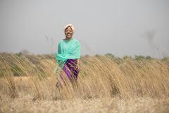 Senhora africana que anda no campo foto de stock royalty free