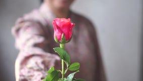 Senhora asiática com sorriso para dar-lhe rosas cor-de-rosa para seu amor um Movimento lento no exemplo do Valentim filme