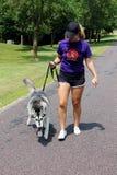 Senhora ativa que anda seu cão Fotos de Stock Royalty Free