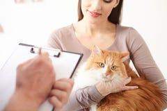 A senhora bonita está mostrando seu animal de estimação ao doutor imagens de stock