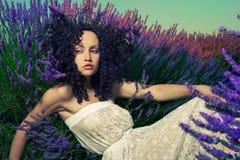 Senhora bonita na alfazema Imagem de Stock Royalty Free