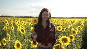 Senhora bonita que anda no campo do girassol do verão vídeos de arquivo