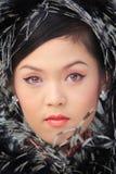 Senhora chinesa Fotografia de Stock