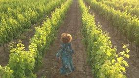 Senhora com o cabelo encaracolado que corre através dos vinhedos franceses video estoque