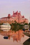 Senhora cor-de-rosa Fotos de Stock Royalty Free